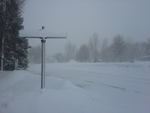 feb-20-snow-green-isle-mike-westphalen
