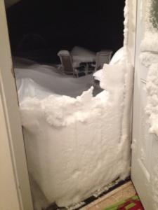 snow-goodhue-sue-gorman