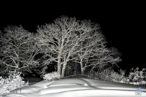 snow-hopkins-chuck-heubach