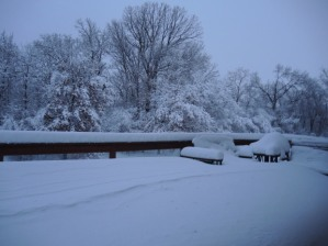 snow-inver-grove-heights-mary-hillegas